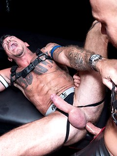 Gay leather bears big cocks Leather Gay Muscle Porn Pics 3x Muscles